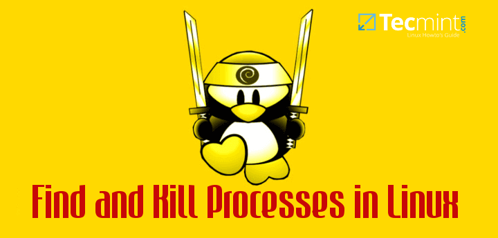 How to Find and Kill Running Processes in Linux